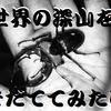 ユダイクスミヤマのオス蛹発見!!