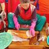 【統営】市場でお刺身~そしてトンピラン壁画マウル