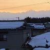 多分裏山最後の雪を楽しみに