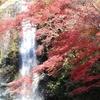 箕面の紅葉を観に行く②観光31R…過去20131202大阪