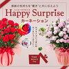HappySurpriseカーネーション 通販 激安の通販サイトは・・・