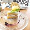【オススメ5店】成田・佐倉(千葉)にあるカフェが人気のお店