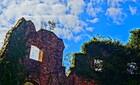 2018/11/9 イーストエンドの廃墟風庭園