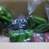 奈半利町から「年4回発送 旬の野菜詰め合わせ」(4回目)が届きました