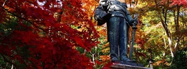 紅葉が一面に広がる隠れ絶景スポット「東郷公園」で撮影。【埼玉県 おすすめ 紅葉】