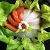【錦江湾のカンパチ】三種盛り海鮮丼