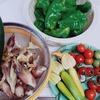 野菜をタダ同然で手に入れられる超簡単家庭菜園のススメ