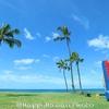ハワイの旅・・準備すすんでるかな、、、
