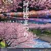 いよいよ10日から第29回河津桜まつりが開催されるよ