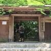 そうだ、京都行こう。「瑠璃光院」春の特別拝観。