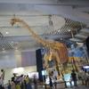大阪ATCで開催されてる「メガ恐竜展」に行ってきました