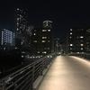 サイドハウスの架け橋☆175☆