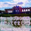 【ウィーン】シェーンブルン宮殿に行ってきました③