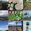【ブログ】GIMPを使って9枚の写真を1枚にしてみた。
