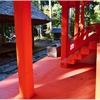 式内・住吉神社(加東市上鴨川)の風景 part35