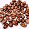 「普段のコーヒー豆」が「3%の希少豆」になるピーベリー。味の違いは?