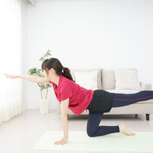体幹を鍛えるには?トレーニングの基礎とおすすめメニュー
