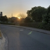 ここのところの乾燥でドライアイ、目が疲れます。そんな中、夕陽を見て少し癒やされました。