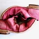 靴の戯れ言