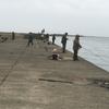 サクラマス第5戦in釧路西港