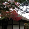 常寂光寺(京都嵐山)へ紅葉観光…過去20161113