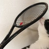 テニスレッスン279回目(リターンとバックハンド開眼!)