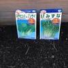 男の家庭菜園シリーズ28 ダイソーで2袋100円の種をまいてみる。
