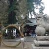 賀羅加波神社 夏越の大祓い 茅野輪くぐり