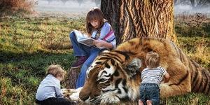 アメリカで人気!幼稚園生向けおススメ英語の絵本10本です。