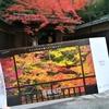 八瀬の秋は、ミラーで倍美しい紅葉の「瑠璃光院」で決まり!※但し一日掛かり