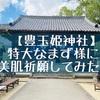 【嬉野・豊玉姫神社】艶かしい白磁のなまず様に美肌祈願!御朱印はないがおみくじが20円