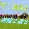 7/20 土曜日のオススメ軸馬と、函館2歳ステークス《G3》の最終予想