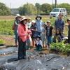 2017年5月14日 「2017親子農業体験」 プレ開校