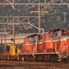 第869列車 「 DD51重連が牽引する阪和工臨を狙う 」
