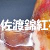 新潟県:佐渡錦紅石の勾玉
