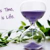 人生後半戦は人生の仕上げの時間だ
