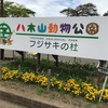 仙台市の八木山動物公園