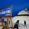 巨大雪だるま おおくら君(肘折温泉街) (夜の部)