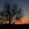 キレイな夕焼けの写真を撮るコツ!夕焼けを撮る3つのポイント