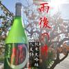 【日本酒】雨後の月 純米大吟醸 八反錦の感想と評価~広島県のお酒、雨後の月の限定酒~