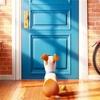 「ペット」感想:動物目線で世界を切り取る