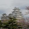 姫路城さくら弾丸バスツアー(その2)