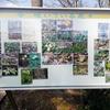 雪国植物園今度こそ(写真多数)