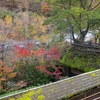 黒川温泉で紅葉を眺めながらの露天風呂:旅館にしむら(熊本県阿蘇郡南小国町)