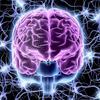 【英語が上手くなりたい人必見】人生を変える脳の学習メカニズム