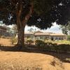 ルワンダでの素敵な出会いに浸っていたら…