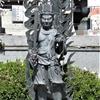 54番札所「延命寺」とツブラジイ