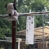 水辺飲み!釣堀「武蔵野園」の食堂で飲むのが楽しい