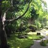 鎌倉散策に行ってきました