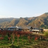 中之条町六合地区の紅葉(重要伝統的建造物群保存地区 赤岩)